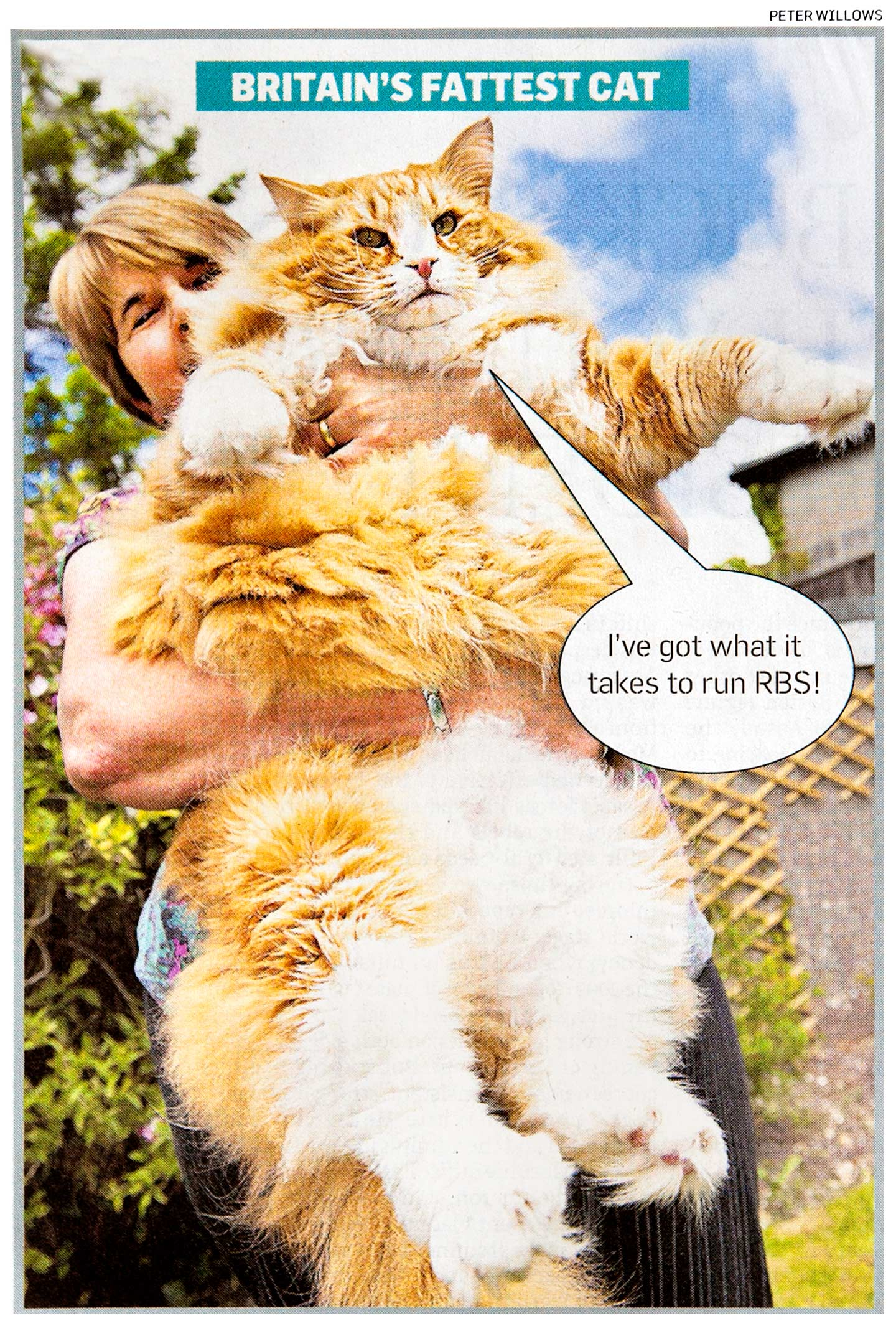 Peter Willows Photographer dorset weddings press & pr Dorset- fat-cat-ulrich-sunday-times